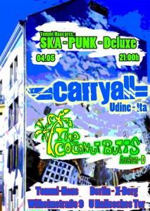 2013-05-04-CarryAll-Druck Kopie