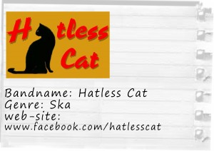 hatless cat